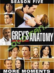 Greys Anatomy season 5