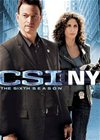 CSI: NY  The Sixth Season